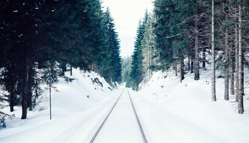 alzheimers-8-journey